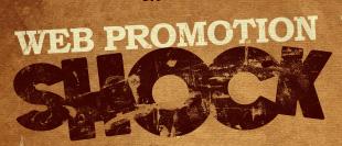 perth web promotion course
