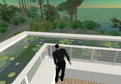 Second Life - Parrot Island